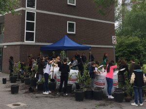 Stichting Urban Street Forest